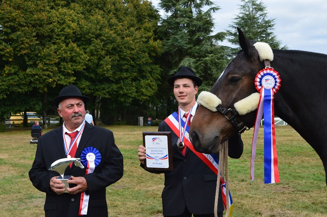 DYLAN CHAMPION DE FR. AMATEUR TRAIT SOLO 2016