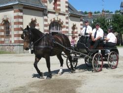 Audacieuse des Roches, Défilé NHS 2012
