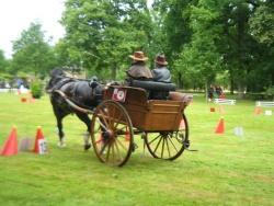 voiture ancienne,(à vendre) concours tradition