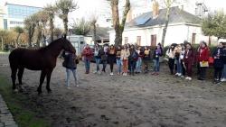 les éleves de Vendée en concours de pointage