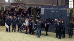 L'équipe des Pays de Loire gagnante du trophée d'utilité jeunes chevaux 2020